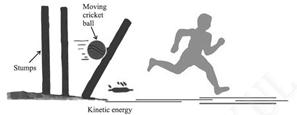 Image result for Moving ball and a running boy possesses kinetic energy moving cricket ball
